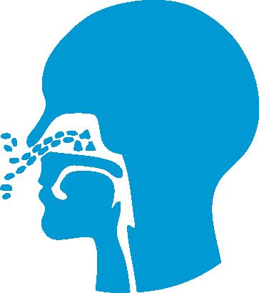 Apnea Abierta Dra Sandra Zabala Parra || Durmiendo Bien || Otorrinolaringología || Cirugia Maxilofacial || Trastornos Respiratorios de sueño.